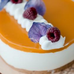 Oras tobulas gaiviam desertui! Tad šį šeštadienį studijoje - sūrio tortų diena! Paruošėme 4 skirtingus skonius šiandien Jums - mėlynių, mangų-pasiflorų, pistacijų, su raudonais apelsinais ir spanguolėmis. Pilni ir porcijomis - kaip tik panorėsi ;) @tiekepejai ir @wolt.lietuva 10-15 val. #cheesecakeday #cheesecake #suriotortas #tilto6 #švenčiantiemsgyvenimą